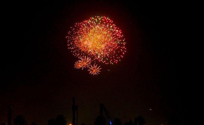 目の前で東京ディスニーランドの花火が!