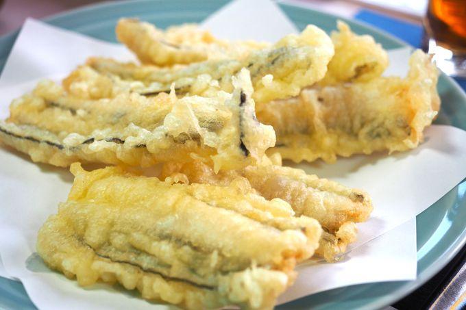 お刺身から揚げたて天ぷらまで美味に舌鼓
