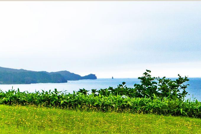 【14:00】神威岬を望む温泉露天風呂「岬の湯 しゃこたん」