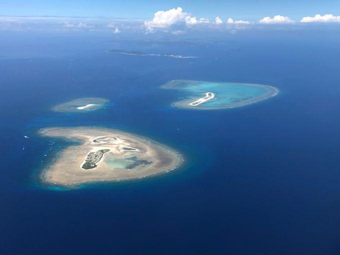 慶良間・チービシ環礁で2ダイブ