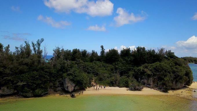 大自然を満喫できるエコツアー