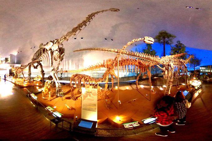 リアルすぎる恐竜が大人気「福井県立恐竜博物館」