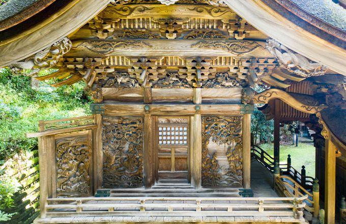 樹上テント「ツリーピクニックアドベンチャーいけだ」&華麗な彫刻「岡太神社・大瀧神社」