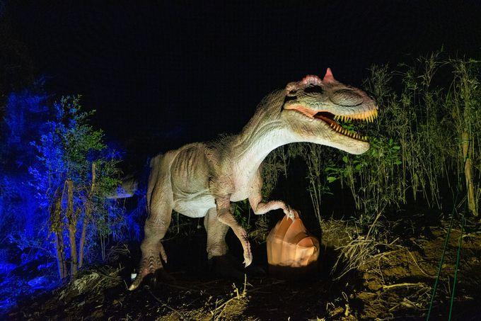 四川省自貢市は恐竜でも有名