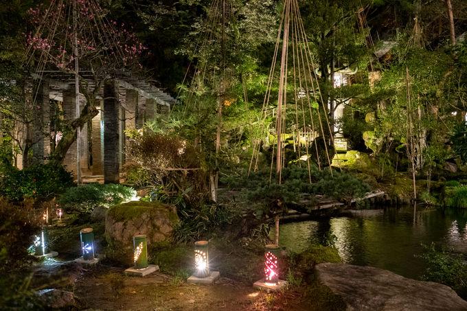登録有形文化財の建物を所有する由緒正しき老舗温泉旅館