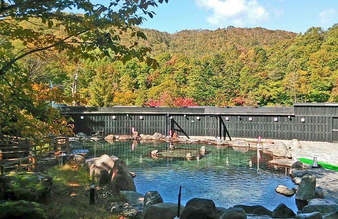 巨大露天風呂と森の湯巡りで秋を満喫!