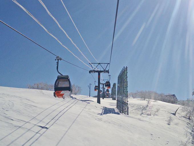 山頂には良質の雪と恋愛スポットも!