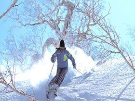 札幌に一番近いパウダー天国!キロロで新雪スキーを満喫