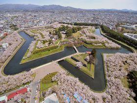 パワースポットでお花見!風水師が教える北海道の開運桜の名所5選