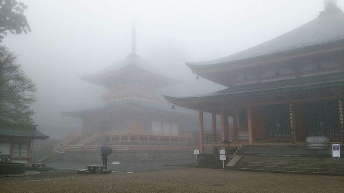 東塔・阿弥陀堂で「比叡の気」を吸収