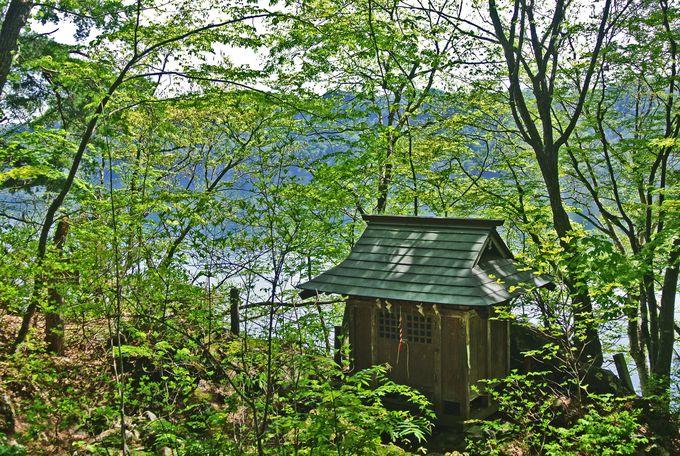 十和田神社と「神泉苑」