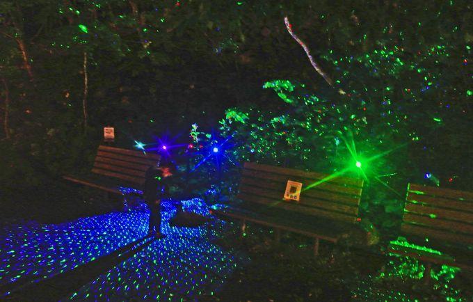 4時間目(PM7時〜):光のイベントショーで幻想体験!