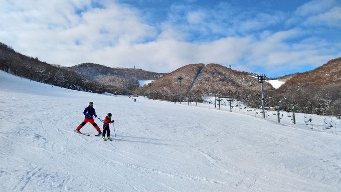 ファミリー層に人気の札幌藻岩山スキー場