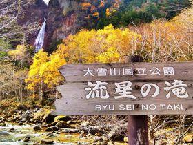 黒岳の絶景散歩も!秋の北海道「層雲峡」周辺の紅葉スポット巡り
