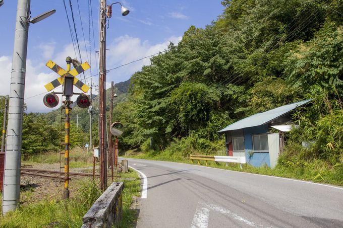 まるで現役のように残る松木街道踏切周辺の鉄道遺構