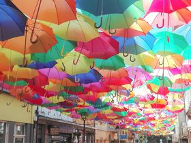 カメラ好き必見!ポルトガルのアゲダ&ポルトはシャッターを切りたくなる街