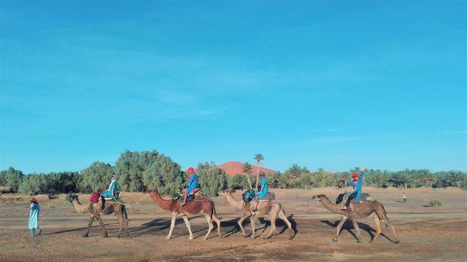 「サハラ砂漠」で感動の絶景に出会おう!!
