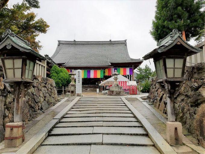 「木之本地蔵院」で驚きの巨大地蔵と漆黒の世界を体験!