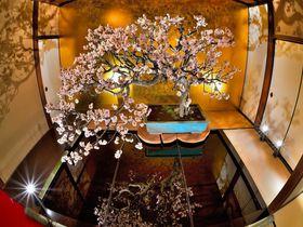 日本一の規模!フォトジェニックな「長浜盆梅展」で一足早い春を体感!