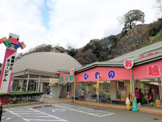 海鮮マーケット「越前うおいち」でお土産ショッピング!!