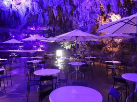 沖縄・古代の洞窟がBARに!神秘的な空間で楽しむ週末の夜