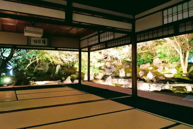 GWまで楽しめる!京都・高台寺/圓徳院の春のライトアップ
