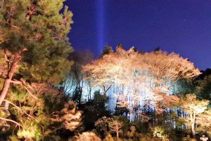 相阿弥作のお庭から竹林へ、絵画のような世界を散策
