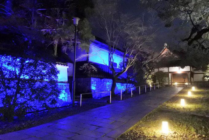 青蓮院門跡・雅な香りに包まれる夜の特別拝観