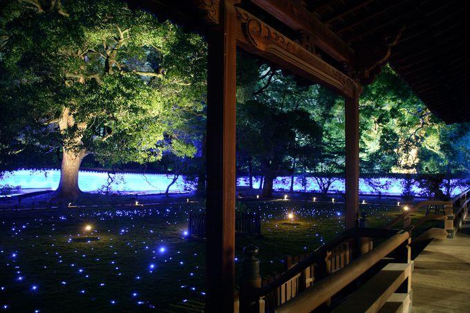 青蓮院門跡・夜の特別拝観の流れ