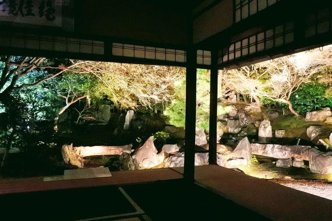 昼と夜それぞれの魅力・見事なお庭を独り占めできるかも?
