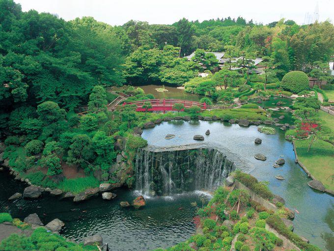 日本庭園を満喫しよう!