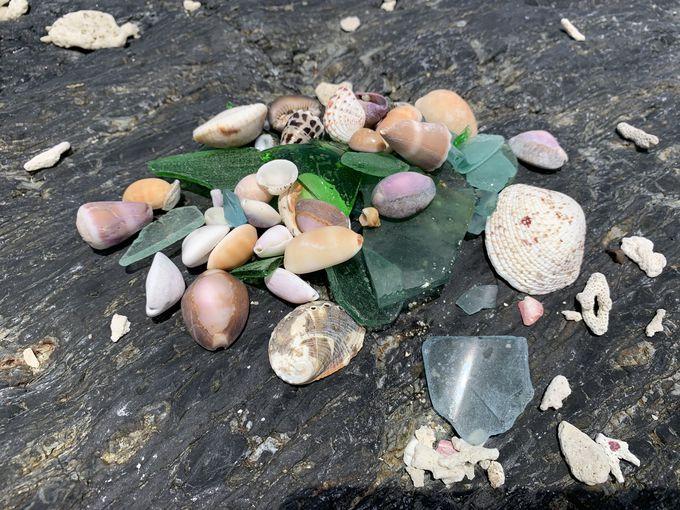 サンゴがいっぱい!白砂のビーチで水遊び
