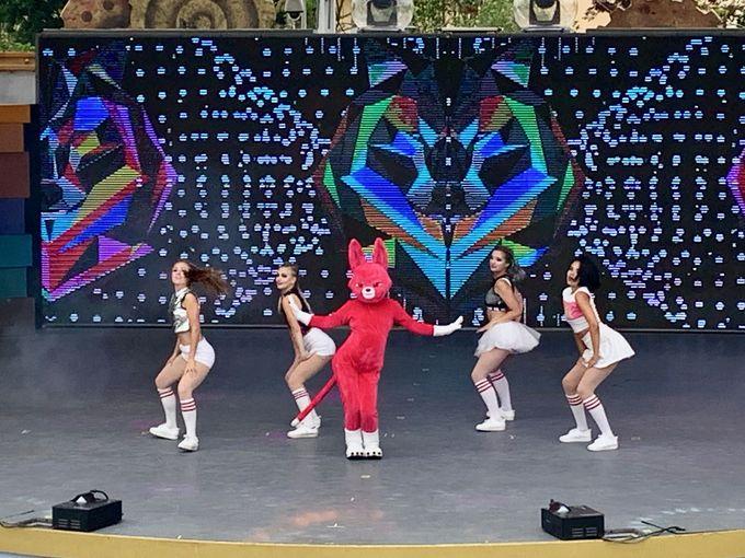 K-POPを感じるステージと大迫力のの4Dシアター