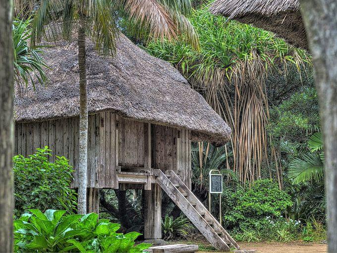 ふるさと村で八丈島の伝統的家屋を見る