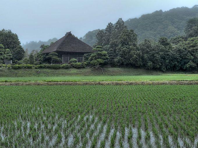 田園風景の中の阿弥陀堂