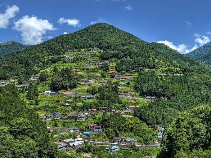 平家の落人伝説の伝わる秘境の地「祖谷山」へ
