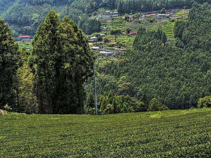 川の反対側の山に臨む集落の景観