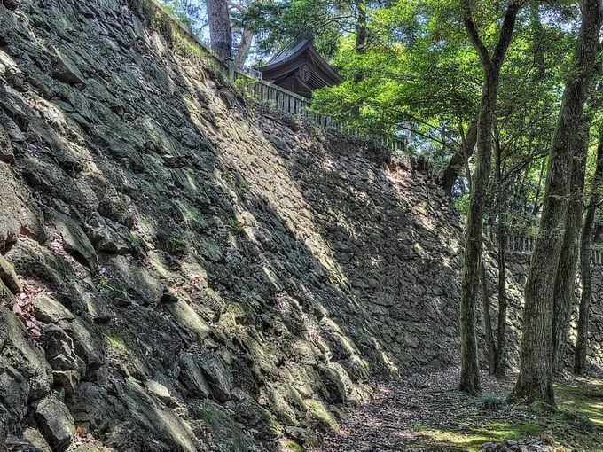 一番の見どころは主郭まわりの高石垣