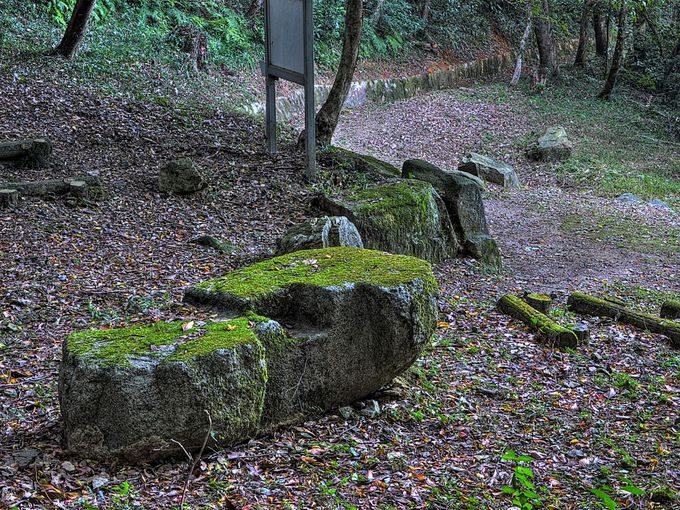 門の柱礎などが残る門跡