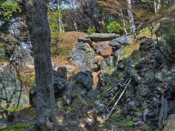 国指定名勝の二之丸庭園は玉澗流の名園