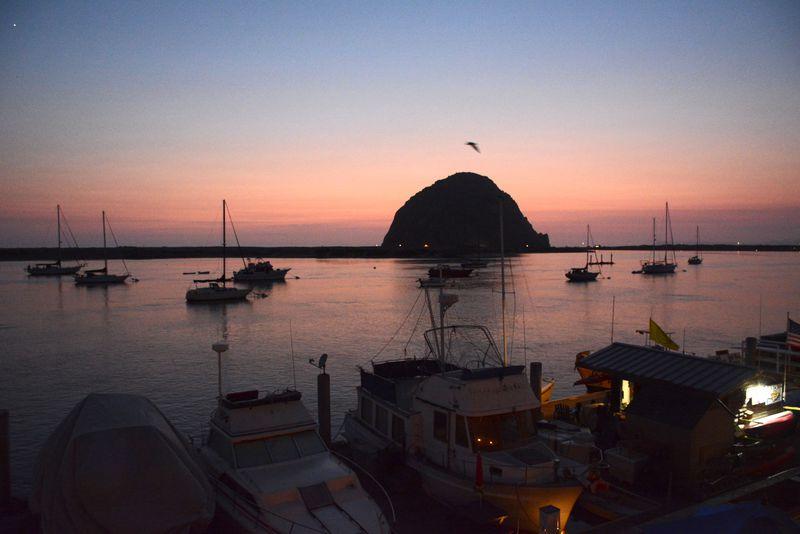 カリフォルニアの小さな港町「モロベイ」でできる5つの体験