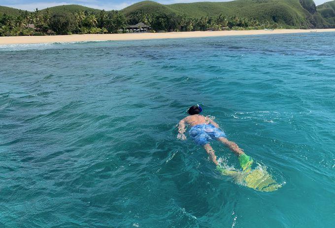 ターコイズブルーの海で天然色のサンゴを見放題!