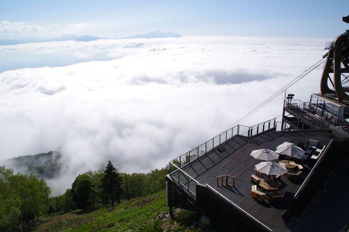標高1,770m天空の世界へGO!「SORA terrace(ソラテラス)」