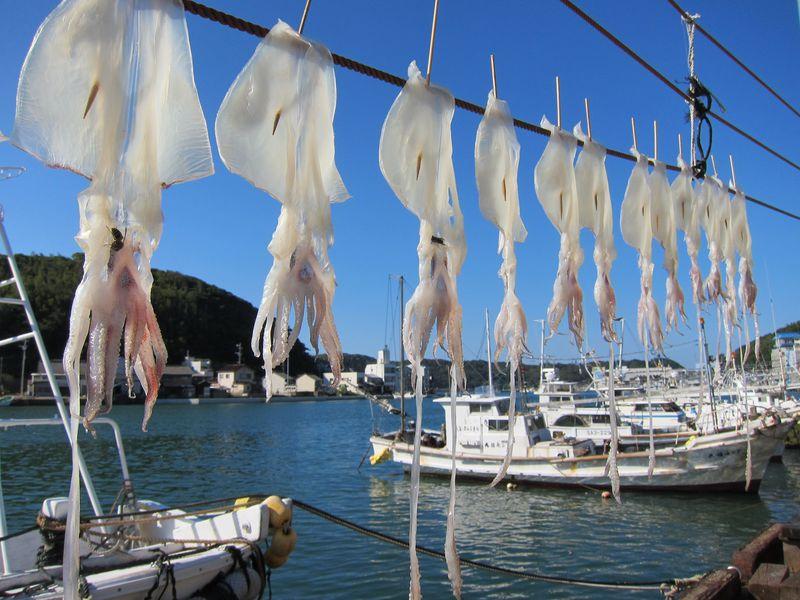 水光呼子の漁港風景