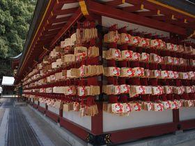 九州でお勧めの初詣スポット5選!パワースポットを訪ねて運気アップを呼び込もう♪