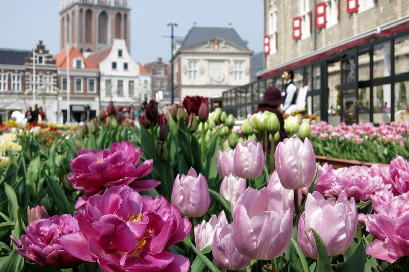 チューリップ祭は必見!春も見どころ満載の「ハウステンボス」