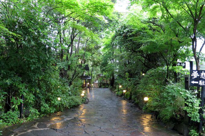 緑豊かな山のホテル夢想園
