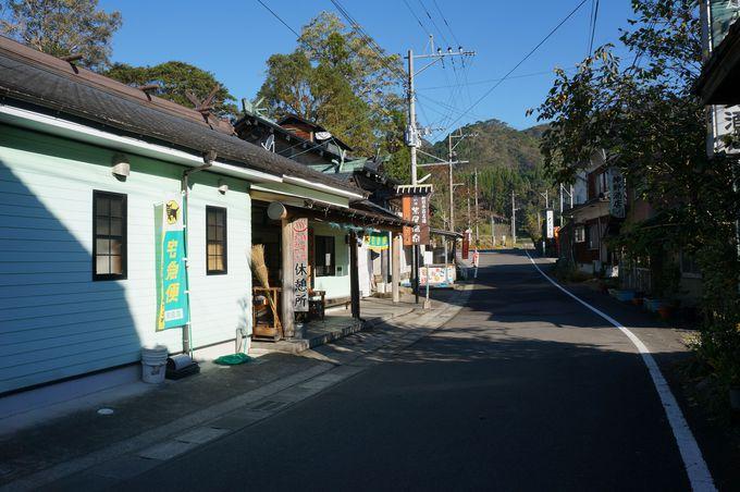 長閑な紫尾温泉〜温泉で渋を抜いて作る名物「あおし柿」も!