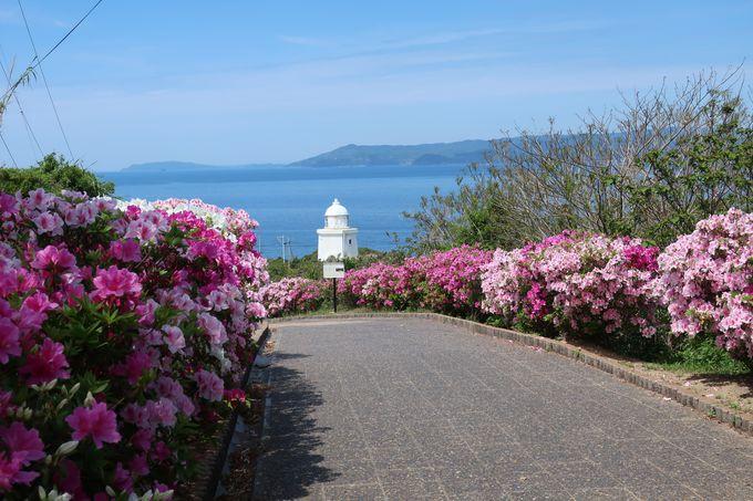 「伊王島」はアクセス便利なリゾート地