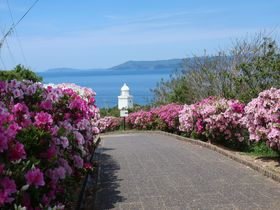 長崎県伊王島の観光スポット7選!絶景&ご当地グルメを楽しもう